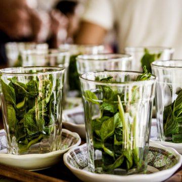 5 erbe che vi rinfrescheranno questa estate: benefici e usi