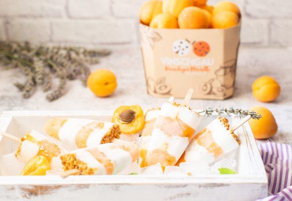 Ghiaccioli albicocche e cocco-7