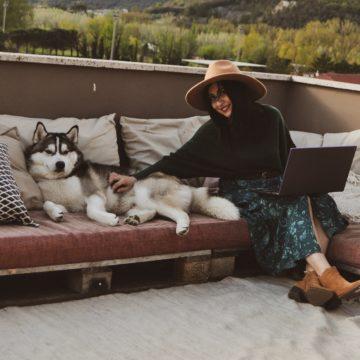 Come raccontare il proprio cane con uno scatto?